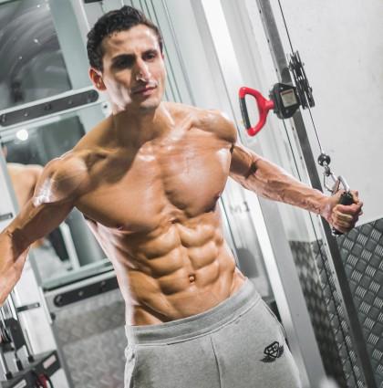 Yahya Q, muscle model